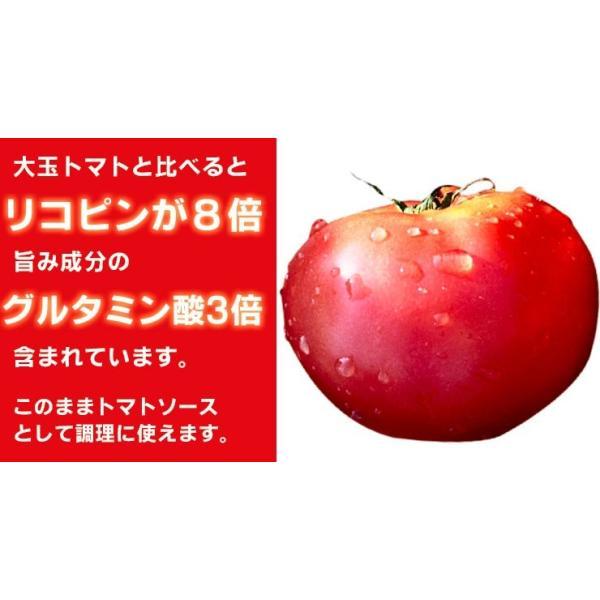 母の日 ギフトセット トマトジュース 北海道 当麻 シシリアンルージュのジュースピューレ(無塩)180ml×6本 祝い 国産 ギフト プレゼント マウロ|tohma-greenlife|04