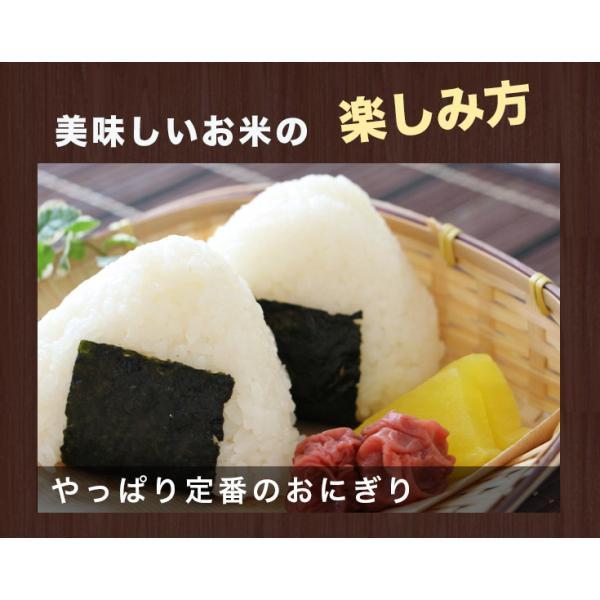 北海道米 新米 お米 当麻  30年度米 とっとき米  (特別栽培 おぼろづき 100%)5kg 北海道  米 プレゼント ギフト 祝い  ギフト 母の日|tohma-greenlife|10