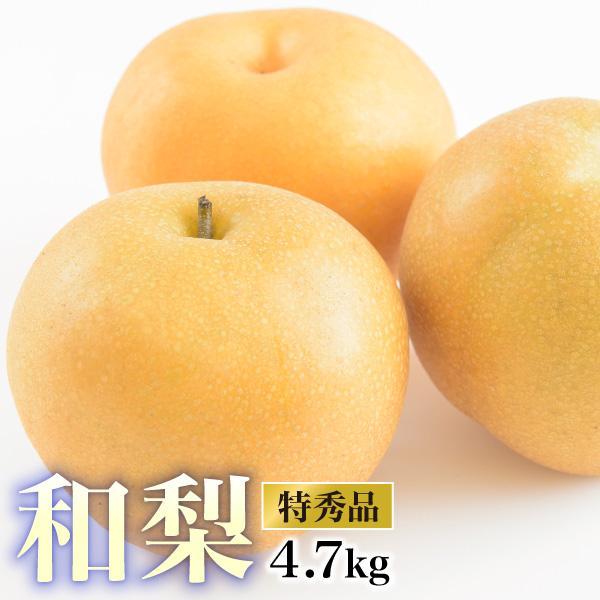 クーポン使用で20%OFF 梨 送料無料  贈答用 最上等級 特秀 福島県産 梨 幸水  豊水 南水 5キロ(12〜16玉)幸水 豊水 南水|tohoku-happy