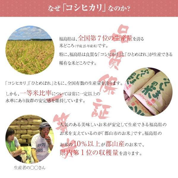 令和元年産 送料無料 福島県産コシヒカリ 特A受賞 采女の里米 10kg(5kg×2)|tohoku-happy|02