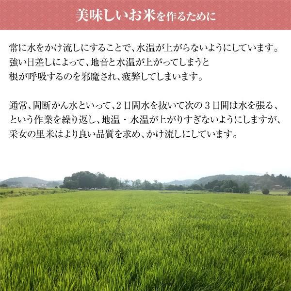 令和元年産 送料無料 福島県産コシヒカリ 特A受賞 采女の里米 10kg(5kg×2)|tohoku-happy|05