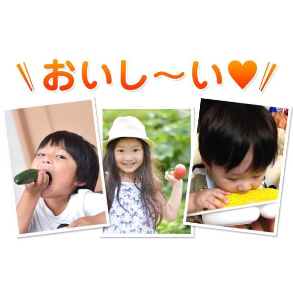 福島県産 野菜7品種詰め合わせ 無農薬 無化学肥料栽培の新鮮野菜を産地直送|tohoku-happy|07