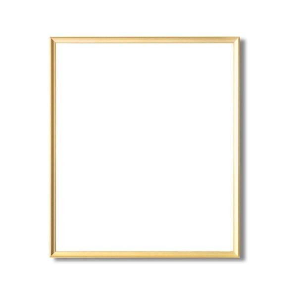 <title>額縁 フレーム 早割クーポン 大全紙サイズ 727×545mm ゴールド 壁掛けひも付き 化粧箱入り 5003</title>