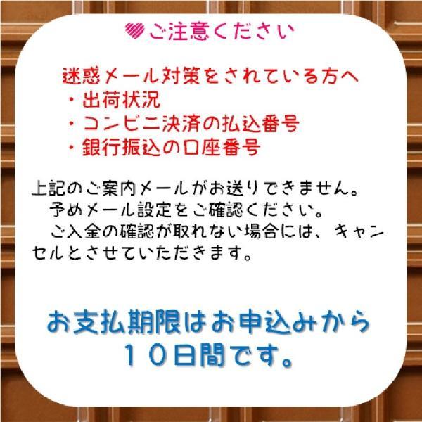 トキ鉄からのバレンタイン限定 きっぷセット|tokitetsu-official|07