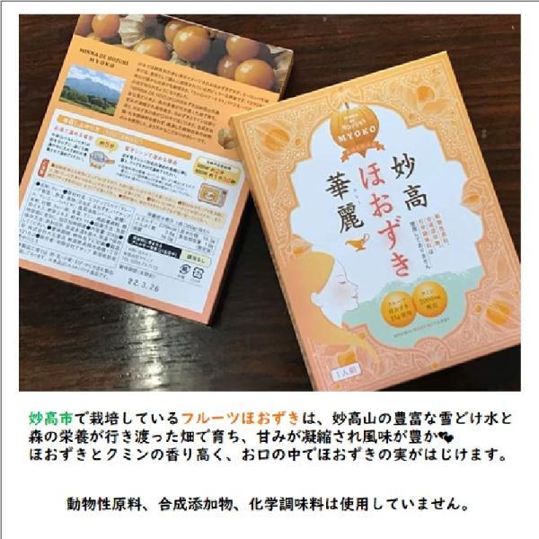 ご当地 カレーセット tokitetsu-official 04