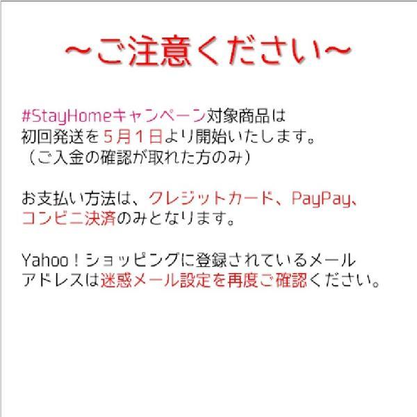 在宅 鉄道DVDセット(3)|tokitetsu-official|04