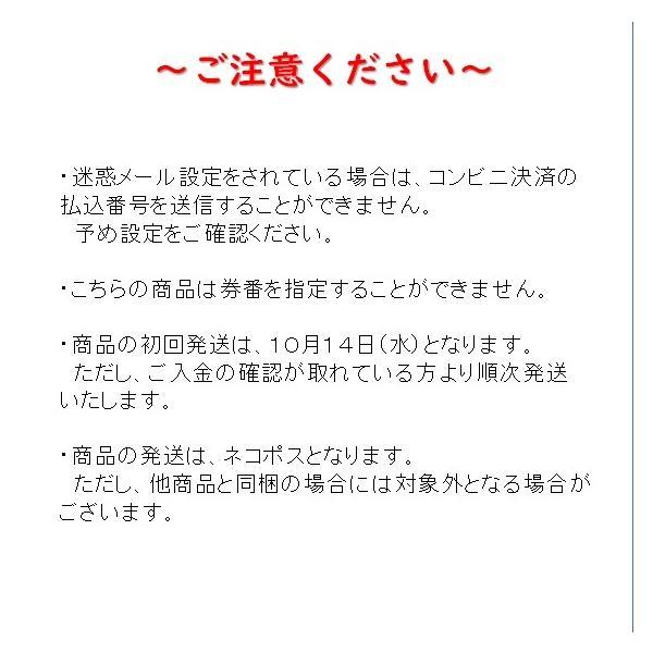じもパス 大人 トワイライトエクスプレス再現車両設置記念|tokitetsu-official|04