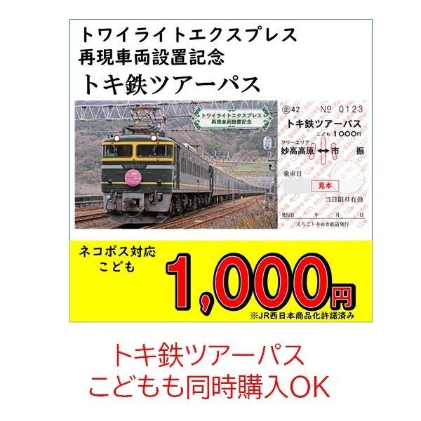 じもパス 大人 トワイライトエクスプレス再現車両設置記念|tokitetsu-official|08
