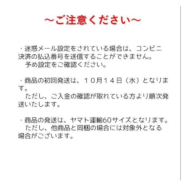 2021年トキ鉄カレンダーセット おまけつき|tokitetsu-official|06