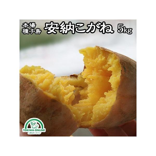 安納芋 5kg 種子島 S M 送料無料 安納こがね 幻の芋 安納黄金 減農薬 低農薬 蜜芋 鹿児島 サツマイモ 日高農園
