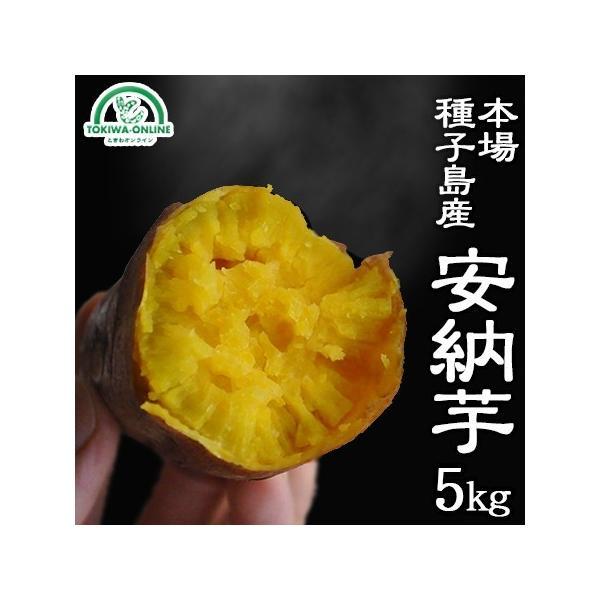 安納芋 5kg 種子島 S〜M 送料無料 安納紅 減農薬 低農薬 蜜芋 鹿児島 さつまいも ギフト 安納べに 日高農園