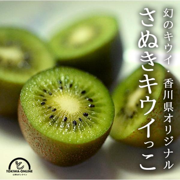 キウイ フルーツ さぬきキウイっこ 1.5kg 国産 香川 果物 キュウイ 通販 深山のキウイ