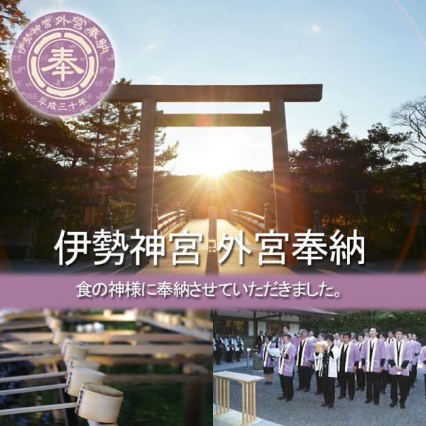 お食い初め 料理セットβ版 これがあればお食い初めが出来ます。(お食い初めの解説書付)お祝い膳は付属しません!天然の鯛・歯固めの石付宅配セット。|tokizenmiwa|02