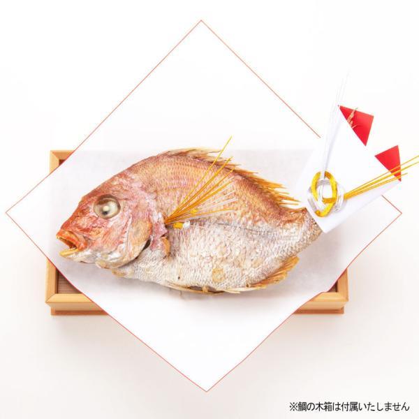 お食い初め 料理セットβ版 これがあればお食い初めが出来ます。(お食い初めの解説書付)お祝い膳は付属しません!天然の鯛・歯固めの石付セット。|tokizenmiwa|03
