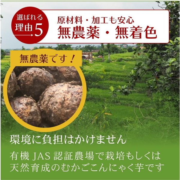 こんにゃく米 乾燥こんにゃく米 こんにゃくごはん 20kg 業務用 糖質50%カット ダイエット 糖質制限 糖質オフ 無農薬 無添加 asu|tokoroten|14