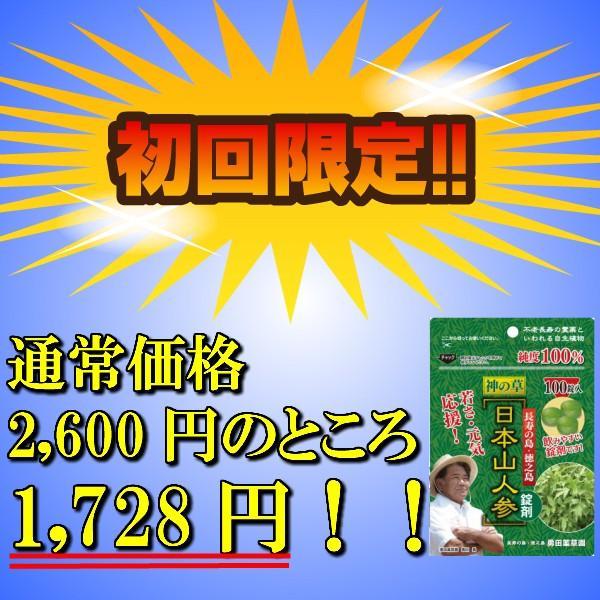 初回限定価格 日本山人参 錠剤 1袋 100錠入 ヒュウガトウキ お試し 送料無料|tokuchoumei|02