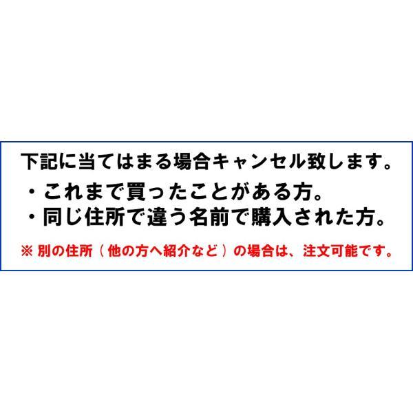 初回限定価格 日本山人参 錠剤 1袋 100錠入 ヒュウガトウキ お試し 送料無料|tokuchoumei|11