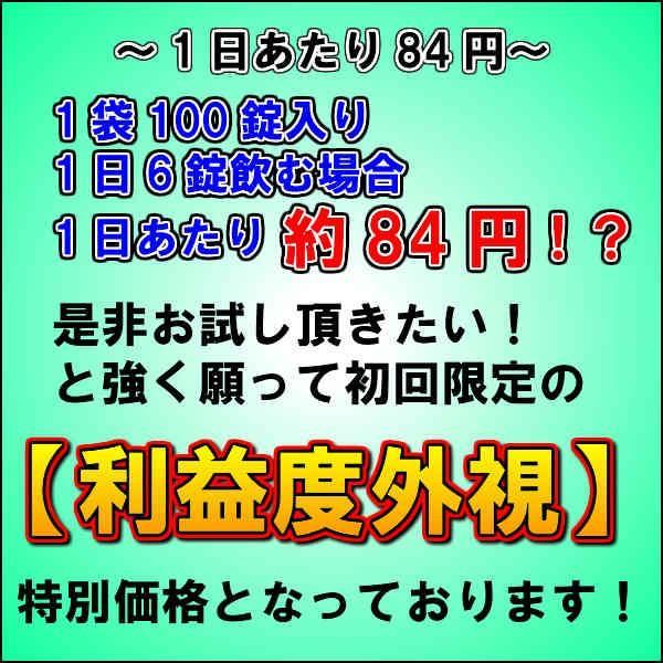 初回限定価格 日本山人参 錠剤 1袋 100錠入 ヒュウガトウキ お試し 送料無料|tokuchoumei|12