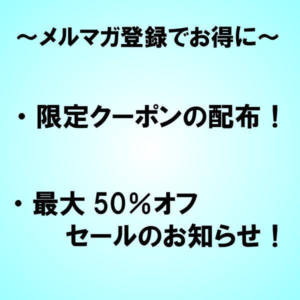 初回限定価格 日本山人参 錠剤 1袋 100錠入 ヒュウガトウキ お試し 送料無料|tokuchoumei|15