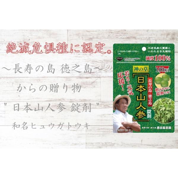 初回限定価格 日本山人参 錠剤 1袋 100錠入 ヒュウガトウキ お試し 送料無料|tokuchoumei|03