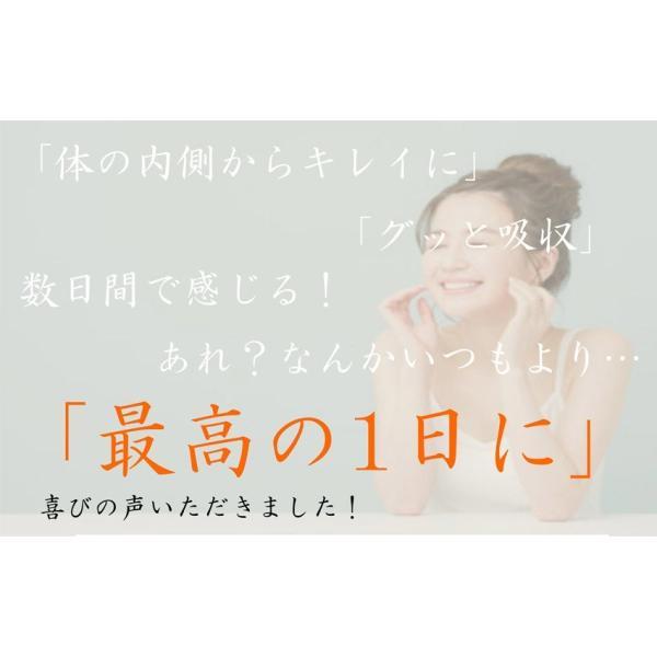 初回限定価格 日本山人参 錠剤 1袋 100錠入 ヒュウガトウキ お試し 送料無料|tokuchoumei|05