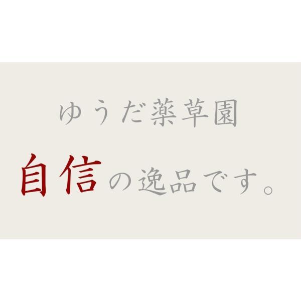 初回限定価格 日本山人参 錠剤 1袋 100錠入 ヒュウガトウキ お試し 送料無料|tokuchoumei|06