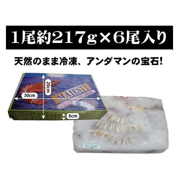 海老 「天然エビ シータイガー6尾」 超超特大 業務用 約30cm 217g ×6尾|tokudaiebi|02