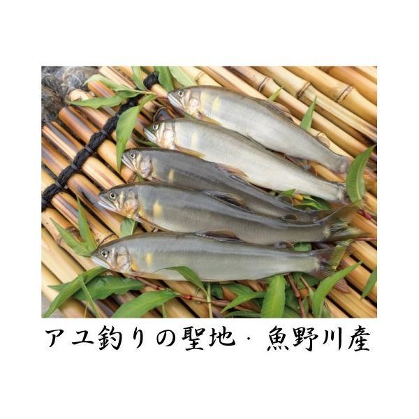 新潟県魚野川産 天然鮎 活〆-60.0℃急速冷凍 5匹 LLサイズ(111.0g〜125.0g)|tokusanuonuma