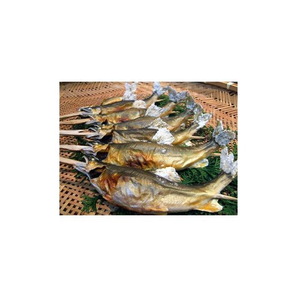 新潟県魚野川産 天然鮎 活〆-60.0℃急速冷凍 5匹 LLサイズ(111.0g〜125.0g)|tokusanuonuma|04