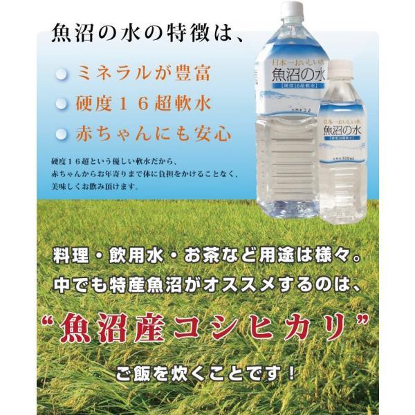 魚沼の水500ml 2ケース(48本)|tokusanuonuma|06