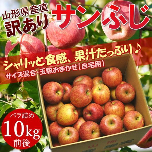 【訳あり/ご家庭用】サンふじ 約10kg前後 バラ詰め ※玉数未定、サイズ混合、キズ、多少の痛みあり、林檎、りんご、リンゴ、ふじ、フジ