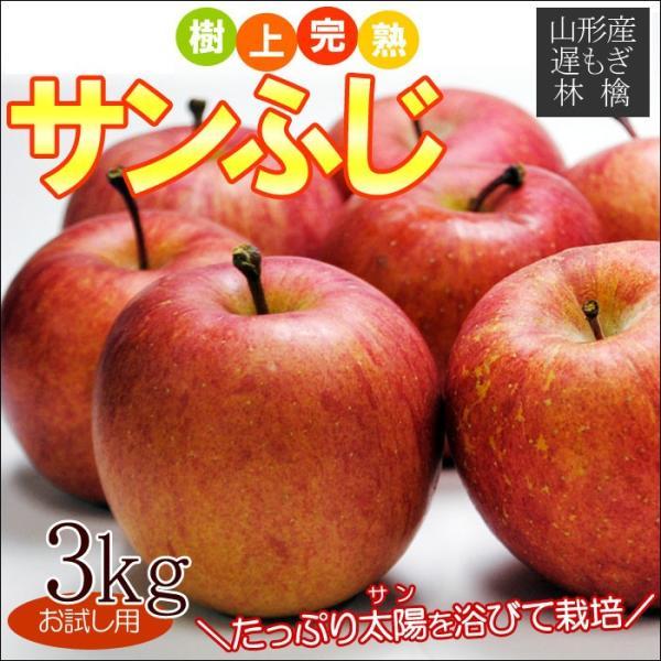 遅もぎ サンふじ 約3kg 8-12玉前後 送料無料、山形県、お試し用、産地直送、りんご、リンゴ、林檎、ふじ、フジ