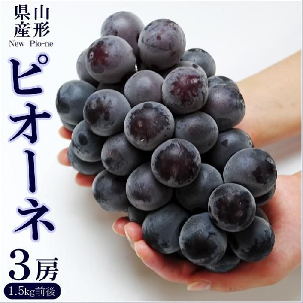 送料無料 ピオーネ 3房 ご贈答用 ぶどう ブドウ 葡萄 山形県産 産地直送 ギフト 進物