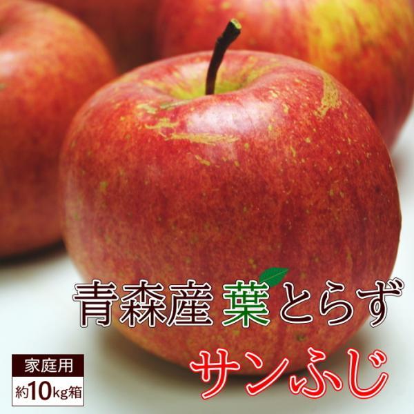 送料無料 葉とらず サンふじ 【家庭用】約10kg 28-36個前後 ※青森産、直送、りんご、リンゴ、林檎、サンふじ