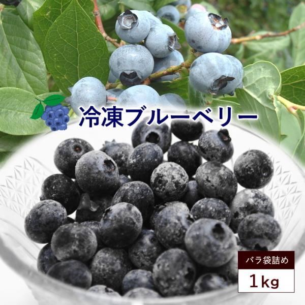 冷凍 ブルーベリー 約1kg ブルーベリー フルーツ 果物 指定日対応 送料無料 サイズ混合