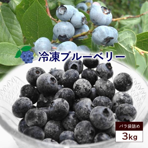 冷凍 ブルーベリー 約3kg ブルーベリー フルーツ 果物 指定日対応 送料無料 サイズ混合