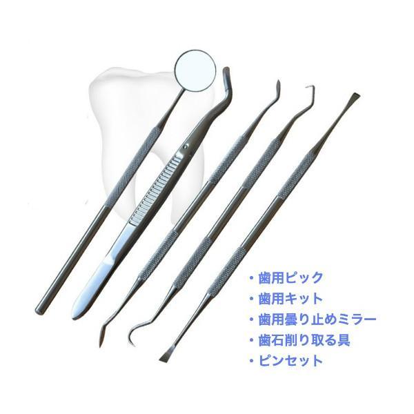 歯石 歯石除去 歯 両頭 鎌形 五点セット 収納ポーチ付き ペットにも可 レビュー投稿で全国送料無料|tokyo-panda|02