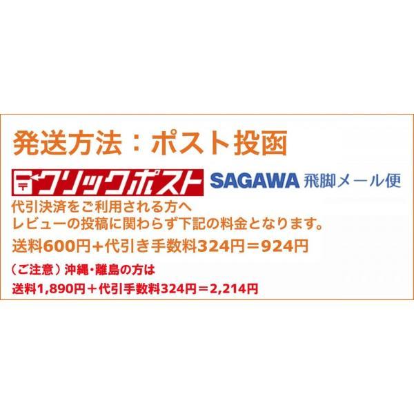 ワイヤレス イヤホン bluetooth 4.1 S6 ブルートゥース スポーツ ランニング 両耳 通話 マイク 音楽 高音質 重低音 日本語説明書付 レビュー投稿で全国送料無料 tokyo-panda 13