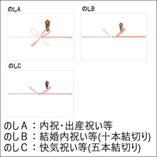 ロイヤルハイネス 紳士ソックス3足セット(抗菌消臭加工) ギフト包装・のし紙無料 tokyogift 03