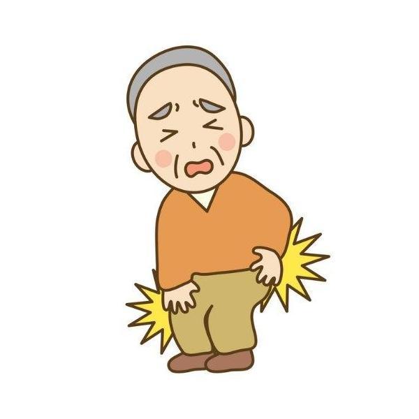 オプティピュア コンドロイチンE 関節炎 腰痛 股関節 ヒアルロン酸 送料無料|tokyoline2015|04