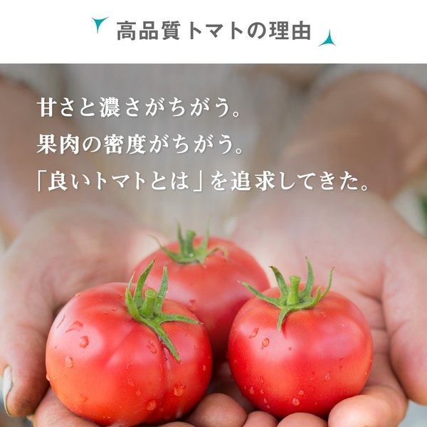 トマトジュース(180ml 5本セット) 余市SUNSET 【お中元】フルーツトマト 100% ストレート 食塩無添加 無塩 野菜ジュース 北海道 中野ファーム ギフト|tomatojuice|04