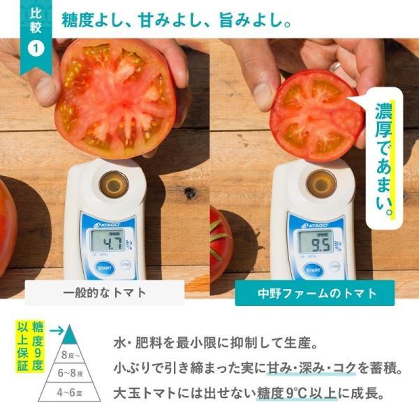 トマトジュース(180ml 5本セット) 余市SUNSET 【お中元】フルーツトマト 100% ストレート 食塩無添加 無塩 野菜ジュース 北海道 中野ファーム ギフト|tomatojuice|05