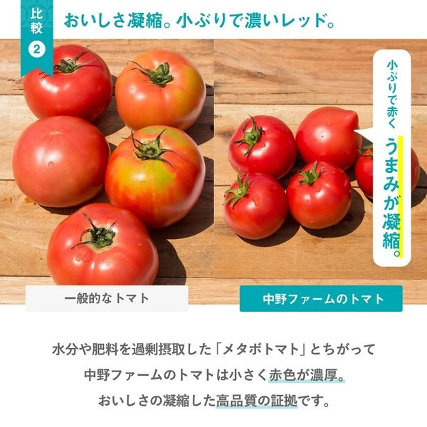 トマトジュース(180ml 5本セット) 余市SUNSET 【お中元】フルーツトマト 100% ストレート 食塩無添加 無塩 野菜ジュース 北海道 中野ファーム ギフト|tomatojuice|06