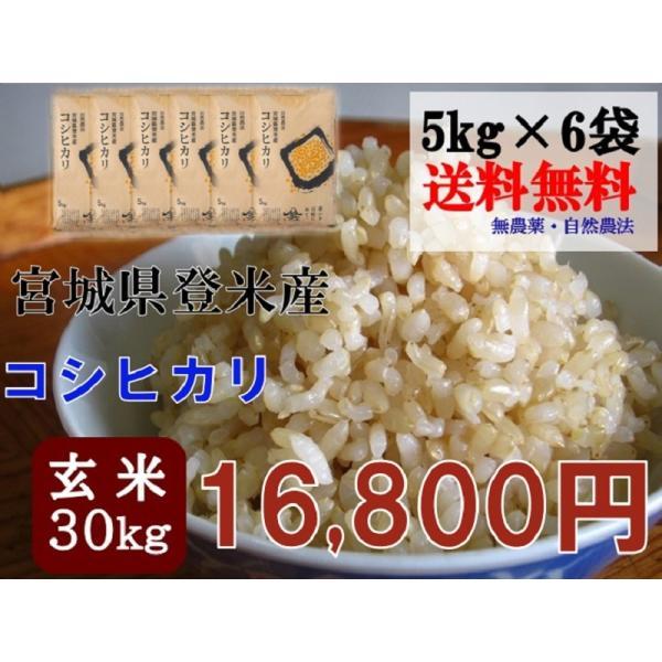 令和2年産 コシヒカリ 30kg (5kg×6袋) 玄米 送料無料  宮城 登米 米 特別栽培米 農薬・化学肥料不使用
