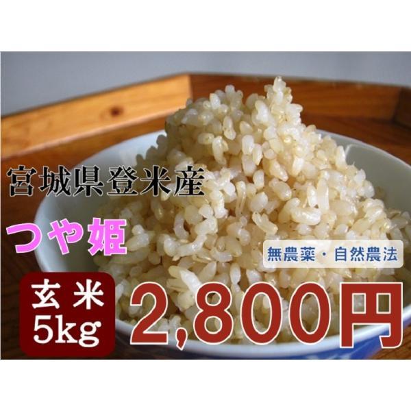 令和2年産つや姫5kg玄米宮城登米米特別栽培米農薬・化学肥料不使用