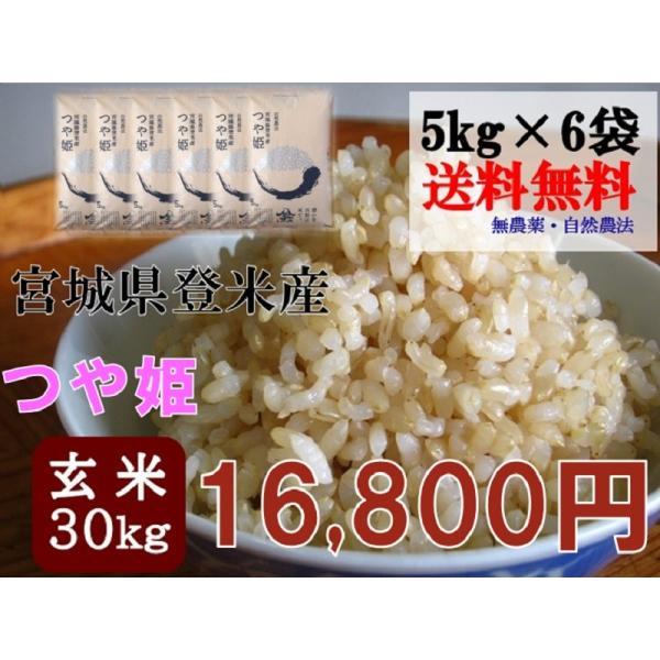 令和2年産 つや姫 30kg (5kg×6袋) 玄米 送料無料  宮城 登米 米 特別栽培米 農薬・化学肥料不使用