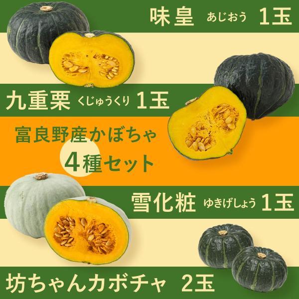 富良野産 かぼちゃ4種セット【5kg】|tomita-melon