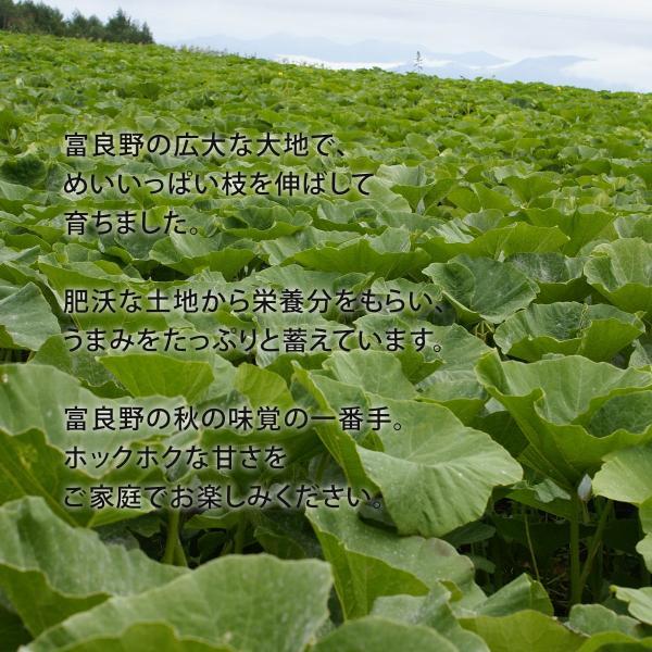 富良野産 かぼちゃ4種セット【5kg】|tomita-melon|02