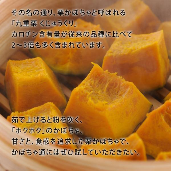 富良野産 かぼちゃ4種セット【5kg】|tomita-melon|05