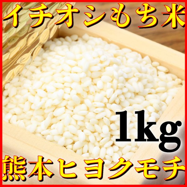 米 1kg 九州 熊本県産 ヒヨクモチ もち米 令和2年産 精白米 くまもとのお米 kuma-kome 富田商店 とみた商店